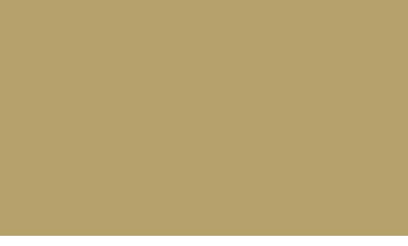 Amelie chez inze Logo